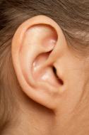 הקטנת אוזניים
